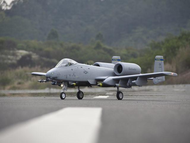 A-10 Thunderbolt von Freewing/Hepf