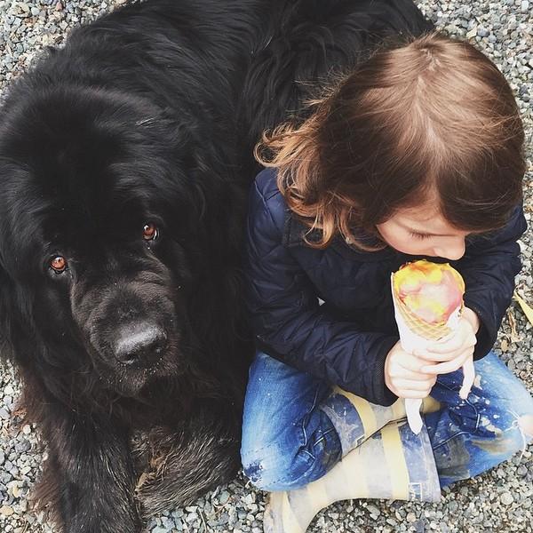 mom-photographs-son-dogs-horse-friendship-stasha-becker-julian-119