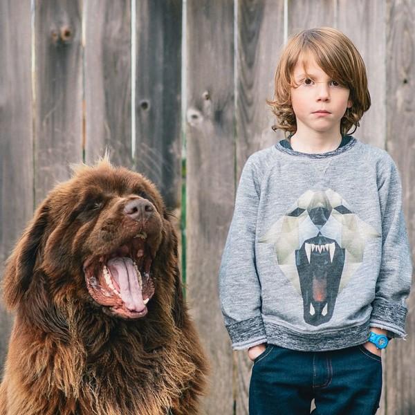 mom-photographs-son-dogs-horse-friendship-stasha-becker-julian-68