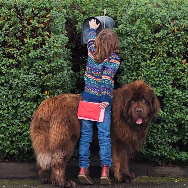 mom-photographs-son-dogs-horse-friendship-stasha-becker-julian-135