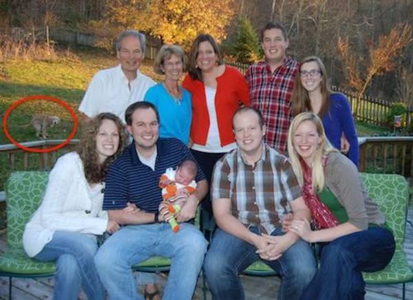family-photo-gone-wrong-dog-shit