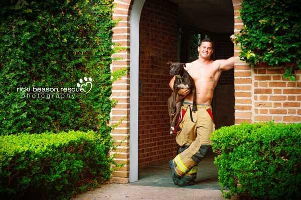 brandmänhundar2