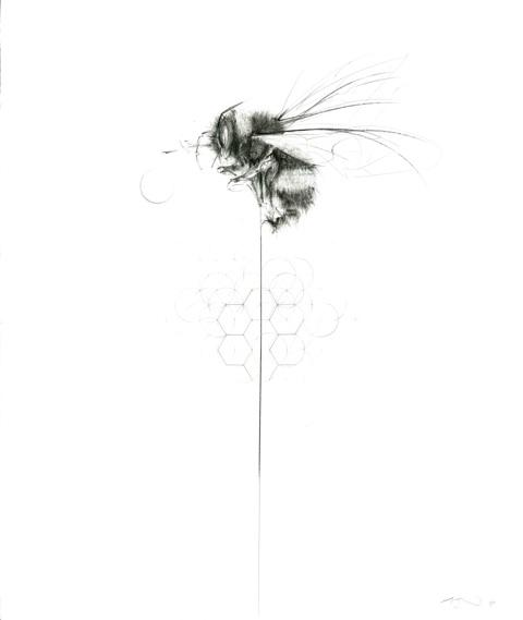 Balancing Bee by Jessica Albarn