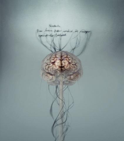 Head Ache by Helen Pynor