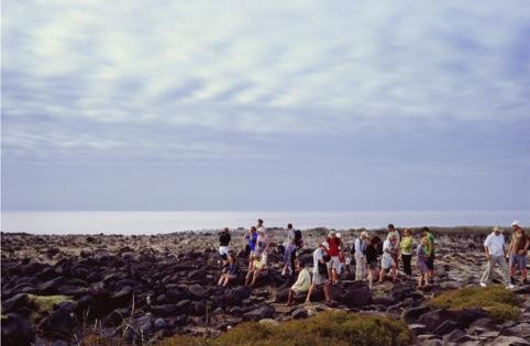 Audiences (Galapagos), Jyll Bradley 2012