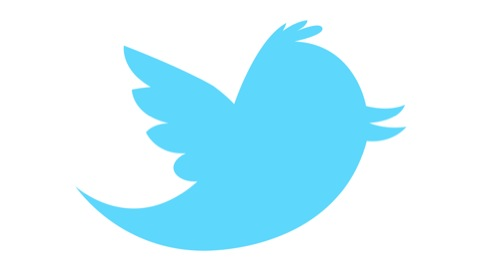 The previous Twitter bird mascot