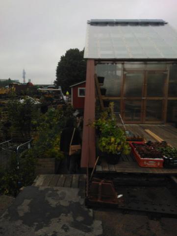The Turntable Urban Garden