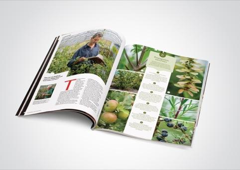 National Trust Magazine Spring 2013