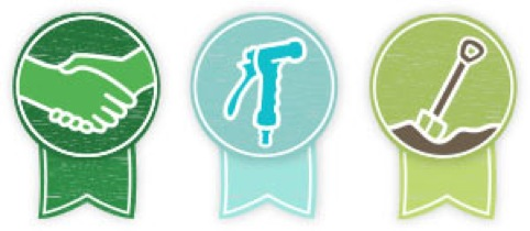 Crunchd icons