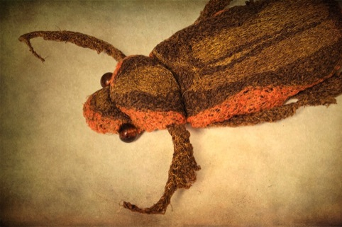 Textile work by Lindsay Taylor
