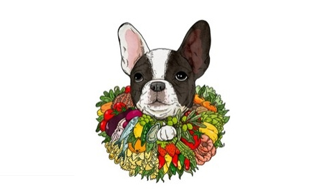 French Bulldog illustration by Andrew Rae, for the El Bulli exhibition at Somerset House