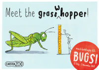 Chester Zoo bugs campaign