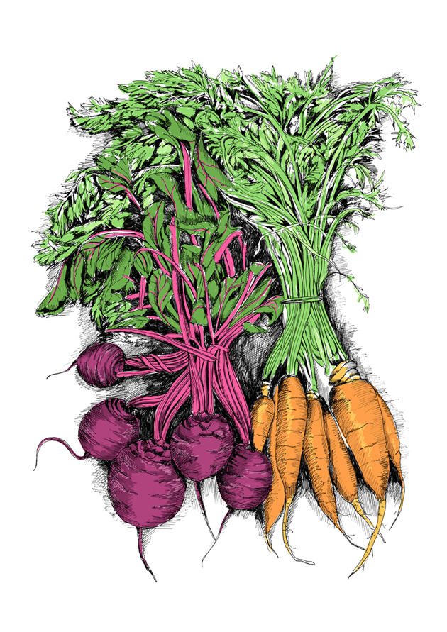 Bunched beetroot and carrots