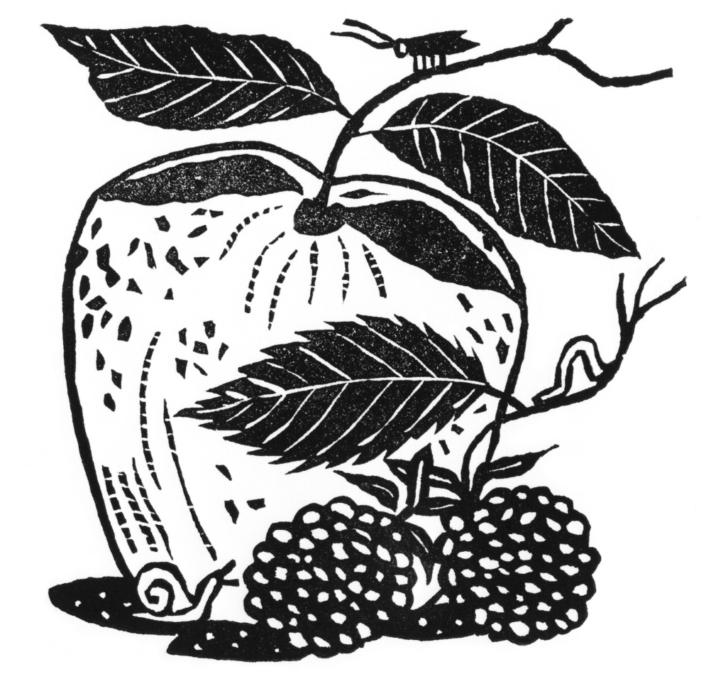 The original apple and blackberry, by Christopher Brown