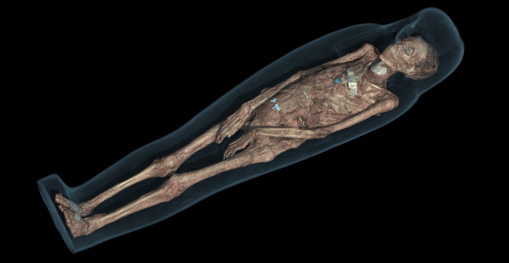 CT scan 3D visualisation of the mummified remains of Tayesmutengebtiu, also called Tamut, showing her body within the cartonnage.