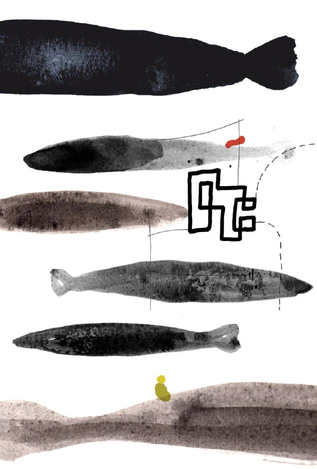 Spartan Barracudas by Paul Davis