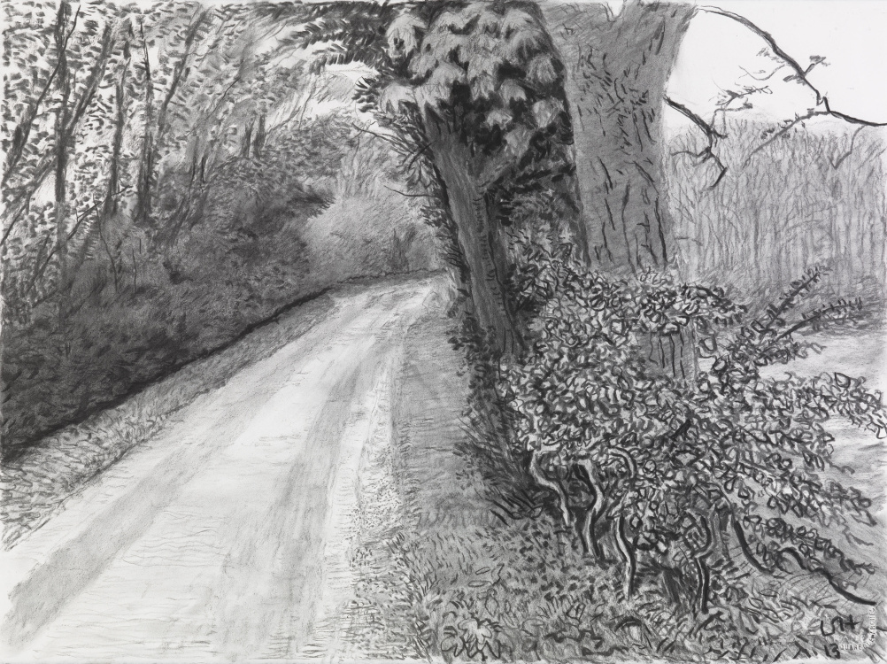 David Hockney, Woldgate, 8 May, from 'The Arrival of Spring in 2013 (twenty thirteen)' 2013 charcoal on paper