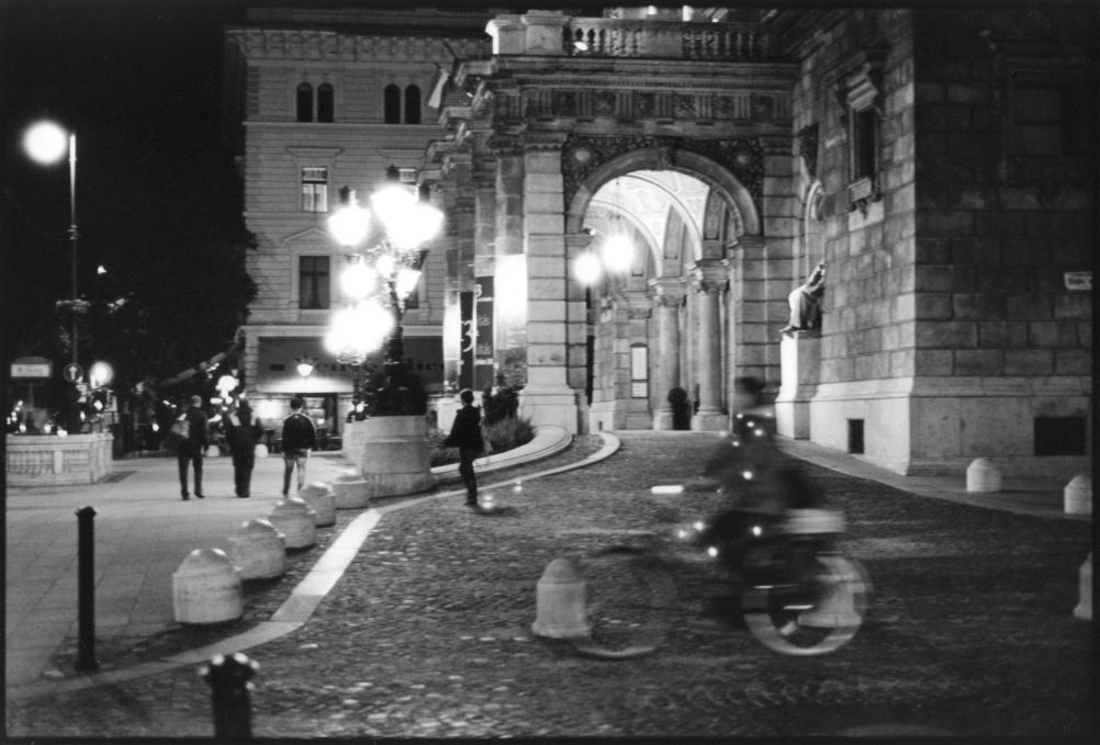 Night Scene, by Nicola Bensley