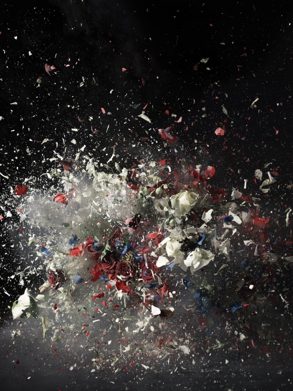 Blow Up, Untitled 1, 2007, Ori Gersht © Ori Gersht, Private Collection