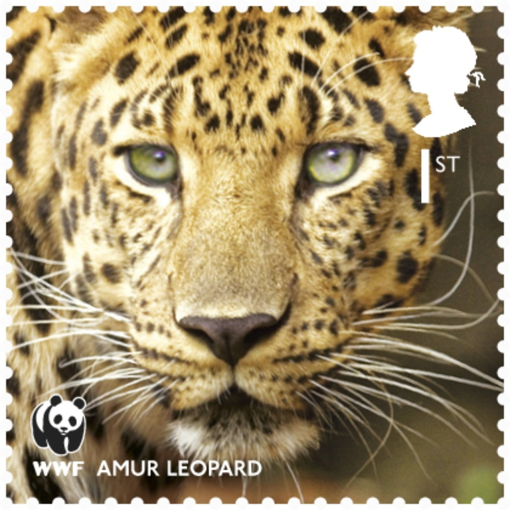 Special Stamps 50th anniversary Royal Mail WWF