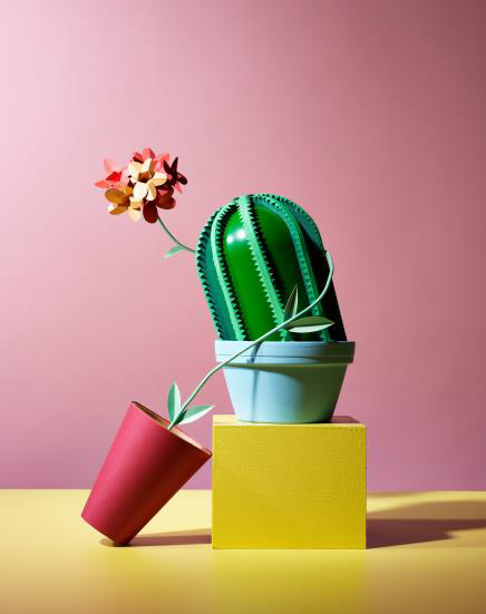 Cactus, by Hattie Newman