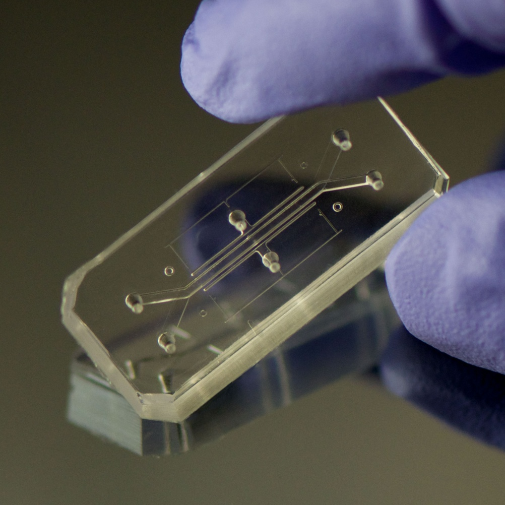 Product: Human Organs-on-chips, by Donald Ingber and Dan Dongeun Huh
