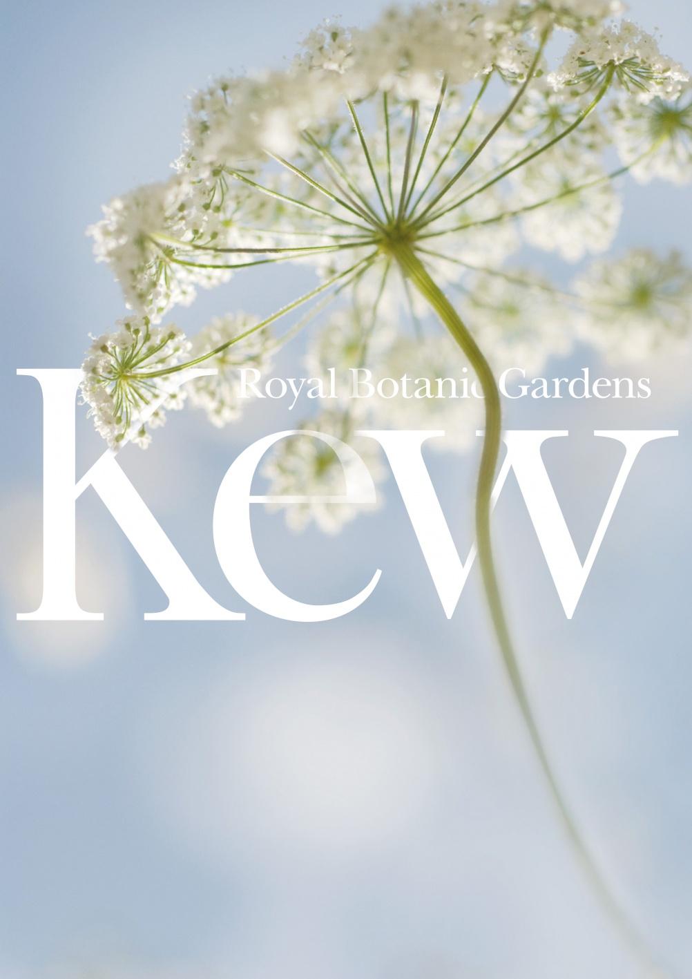Kew_blog_1
