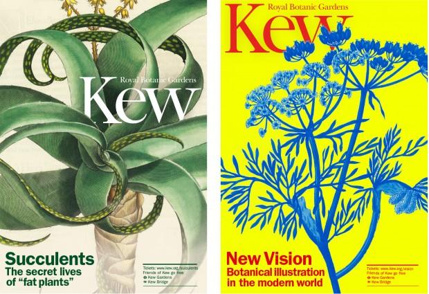 Kew_blog_4-620x425