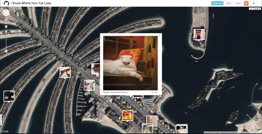 I Know Where Your Cat Lives, Dubai, 2014