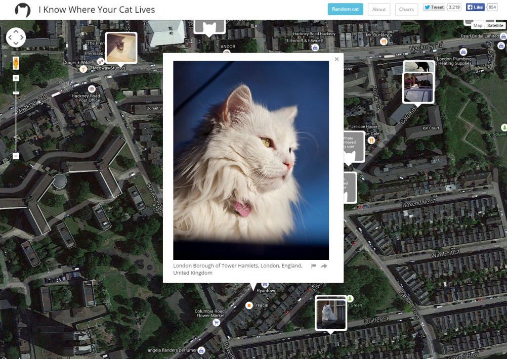 I Know Where Your Cat Lives, Hackney, 2015