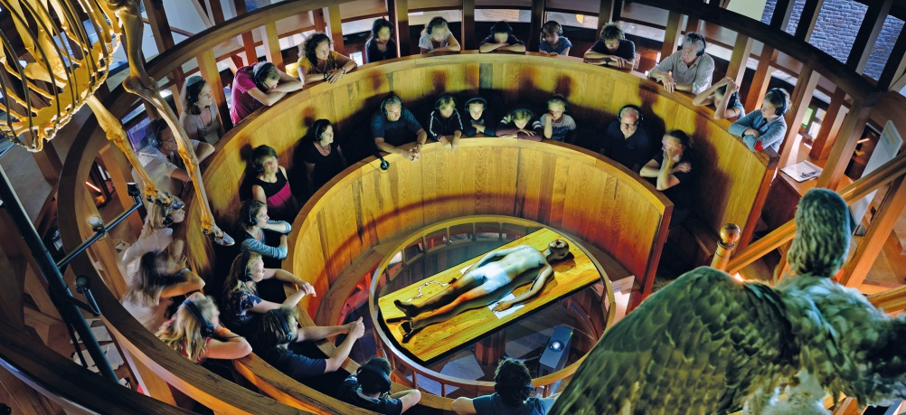 Anatomical-Theatre_1