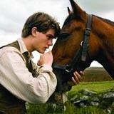 /x/h/a/warhorse160.jpg