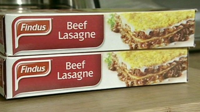 BeefLasagne-Findus-Product-2013