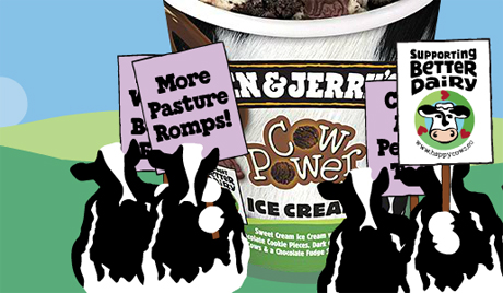 benjerrys-website-2013-460