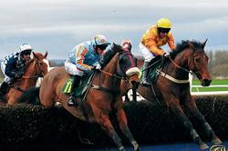 Horse-racing-Paolo-Camera-250