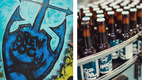 brewdog-products-2013-460