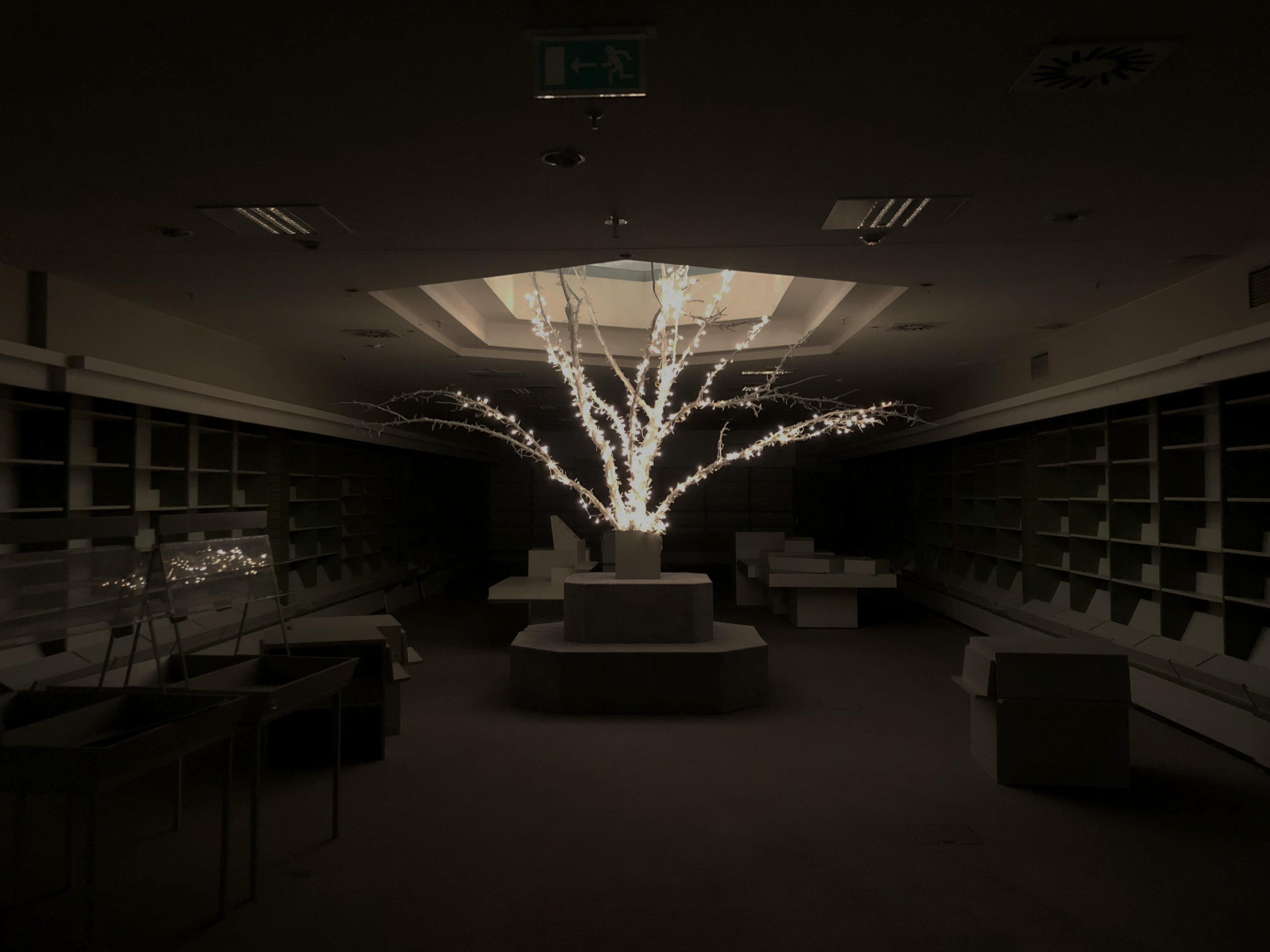 Der Sternverlag in Düsseldorf, einst Europas größtes Buchhaus, nach der Schließung