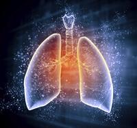 Ipertensione polmonare | Pazienti.it