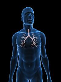 Bronchite | Pazienti.it