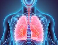 Adenocarcinoma polmonare | Pazienti.it