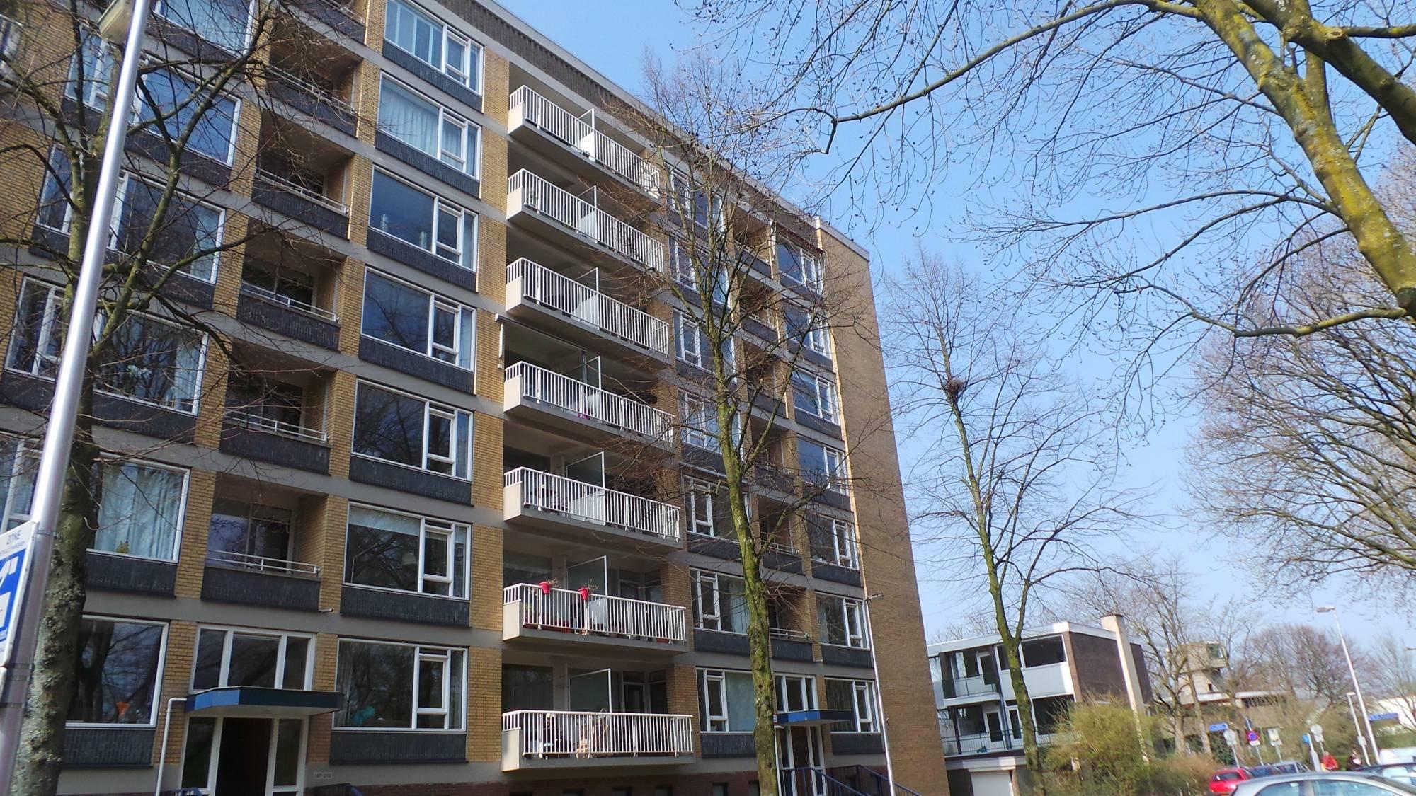 Karel Doormanlaan 224