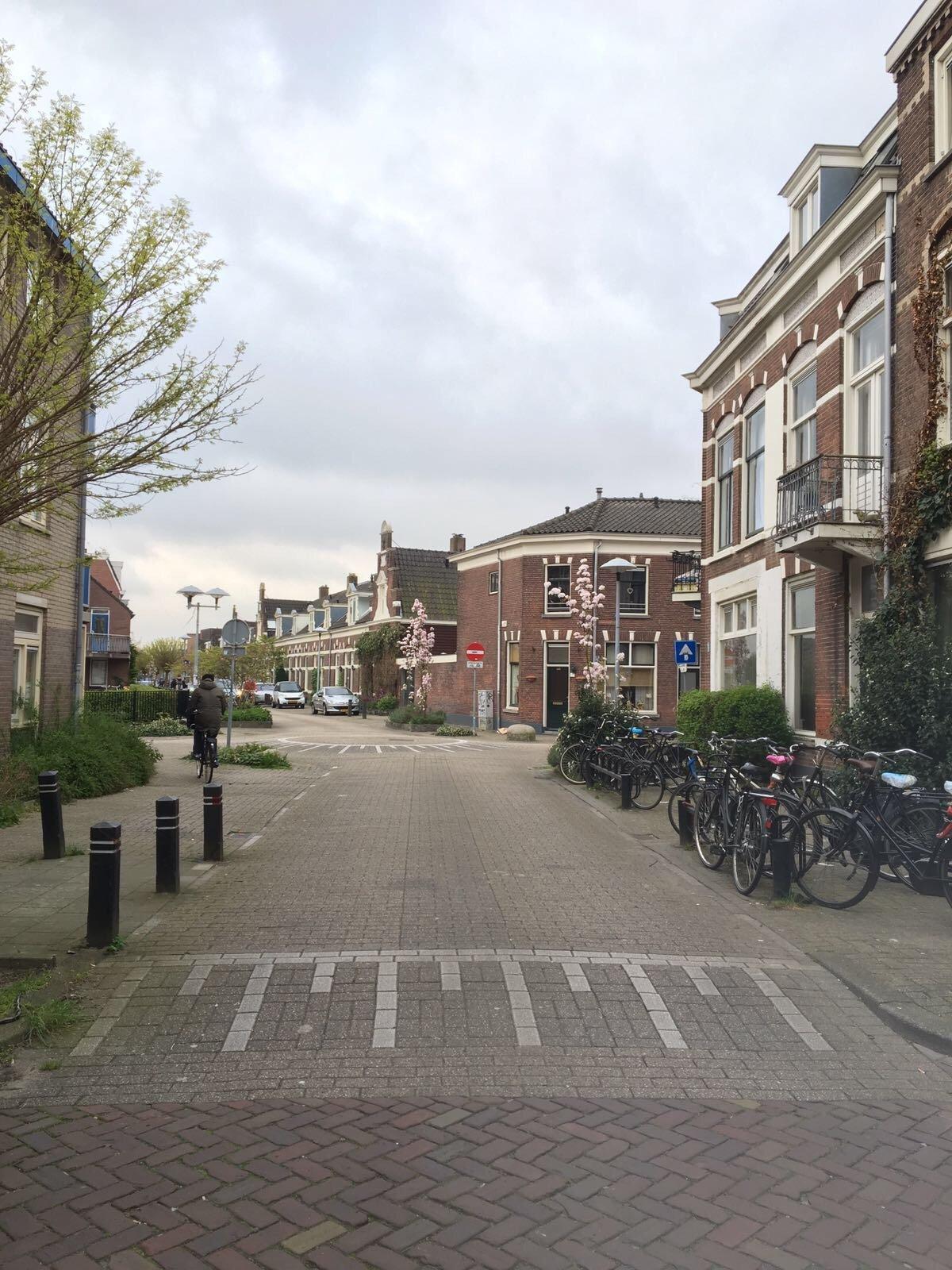Minstraat 17