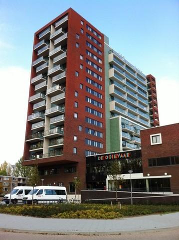 Hollands Tuin 138