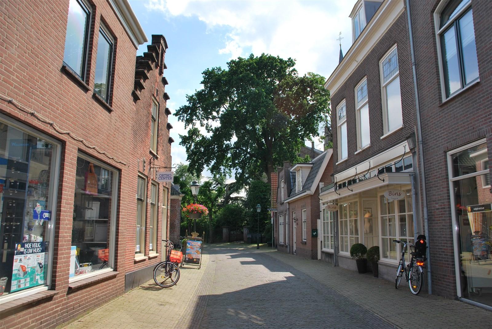 Treubstraat 2