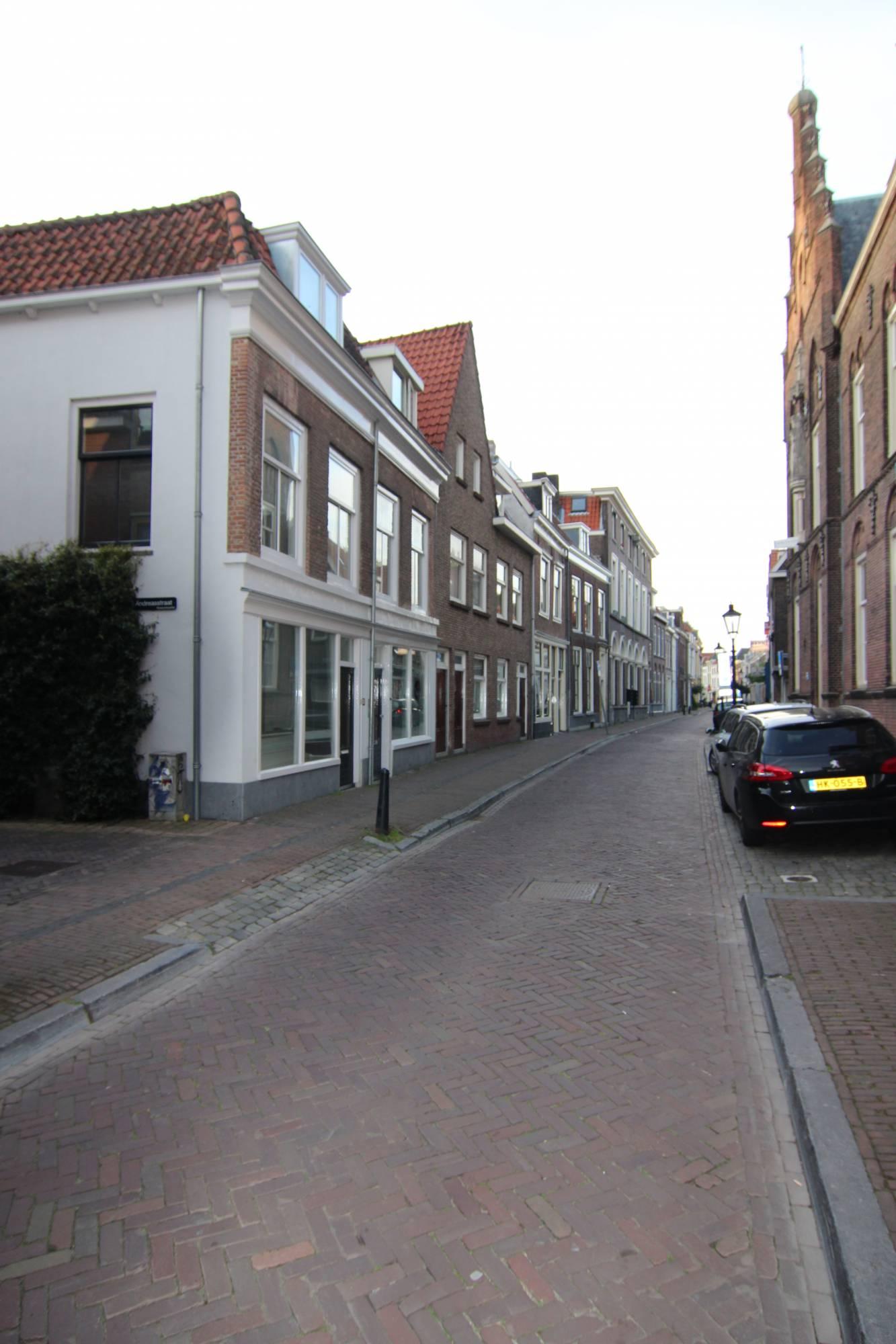Springweg 101