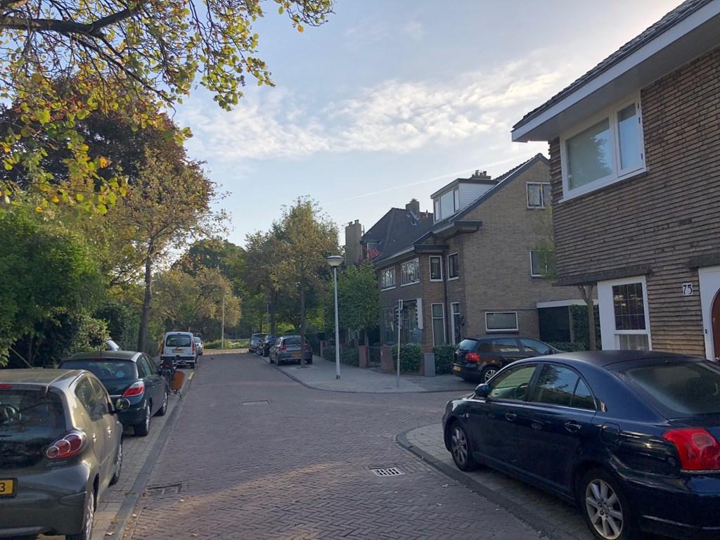 Hugo de Vriesstraat 71