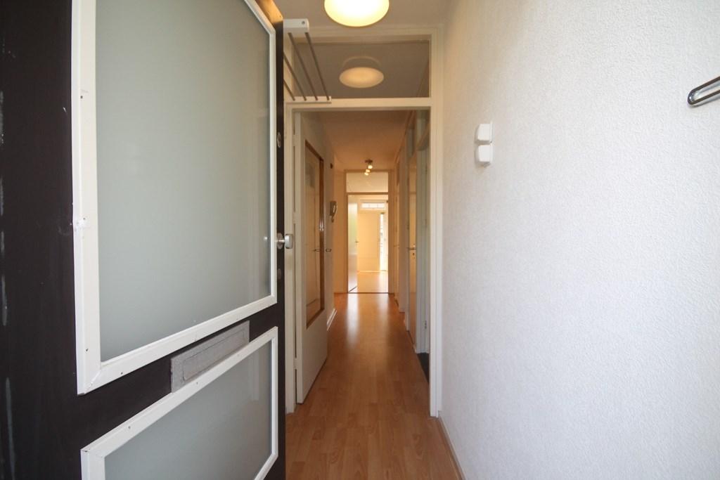Zwedenburg 218