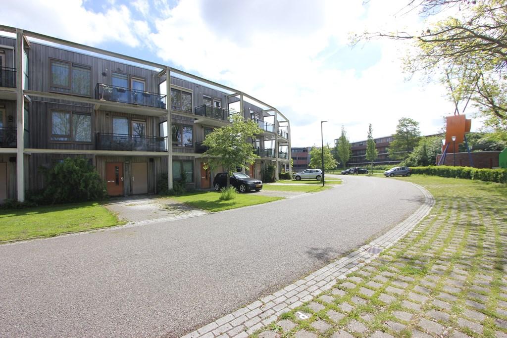 Westerpark 104