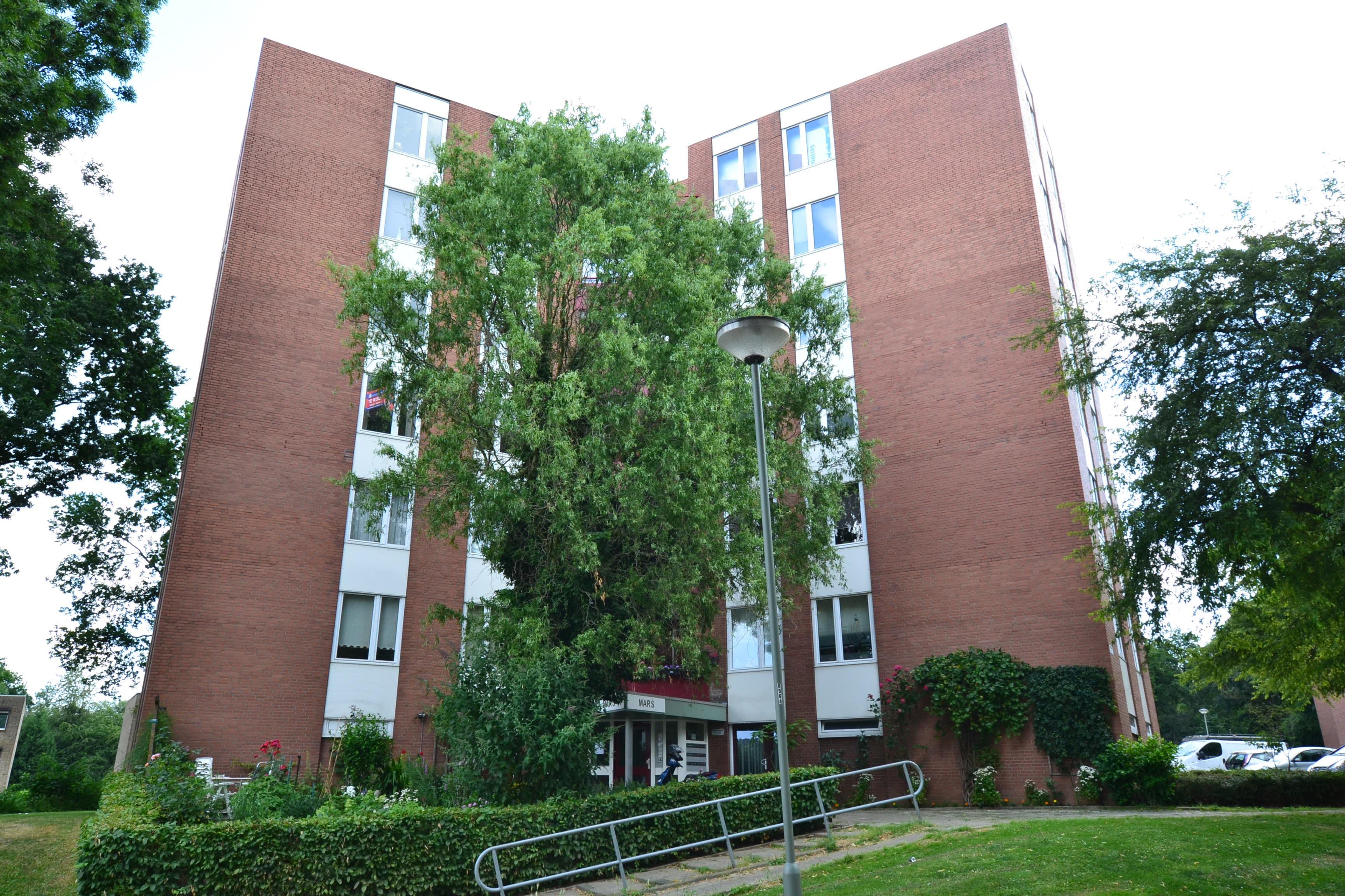 Berghofstraat 73