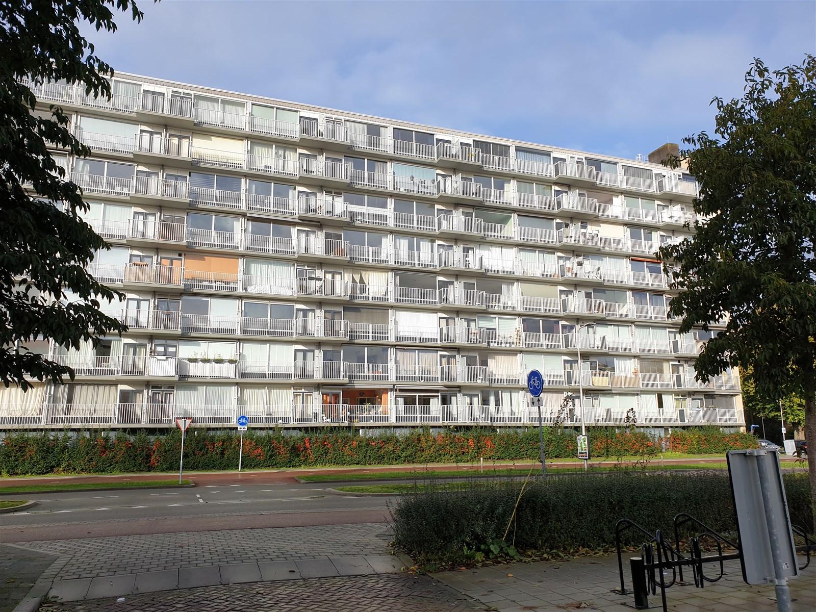 Rauwenhofflaan 28